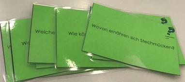 Bilderbuch im Sachunterricht Gerda Gelse - Fragen zum Buch